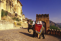 Elephant ride to the Amber Fort, Jaipur, India