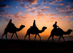 Sunset camel ride in the Moroccan desert