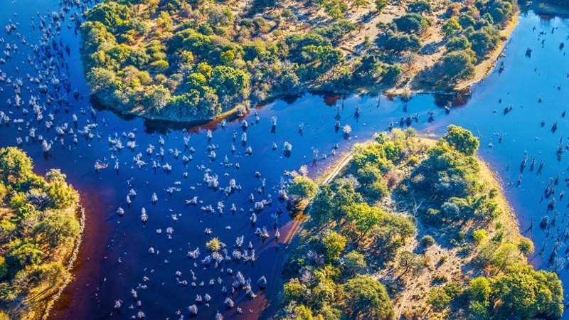 Waterways in the Okavango Delta