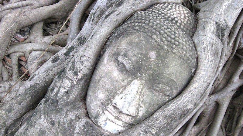 buddha-ayutthaya-thailand.jpg