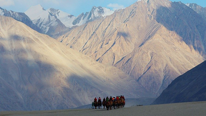 Camel ride in sand dune, Nubra Valley, India