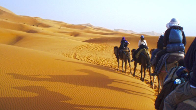 Camel riding in the dunes, Merzouga, Morocco
