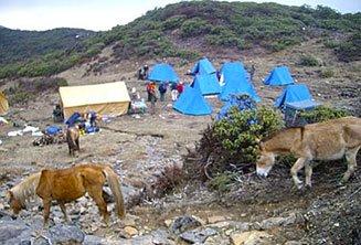 camping-bhutan.jpg