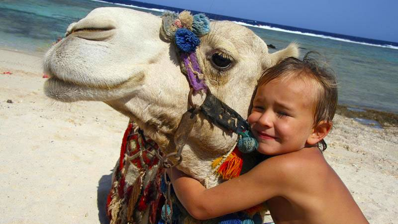 child-camel-hurghada-egypt.jpg