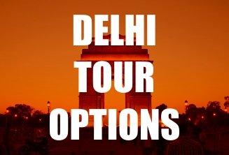 Delhi tour options