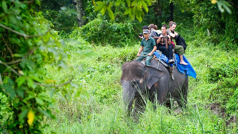 Elephant ride in Chitwan, Nepal