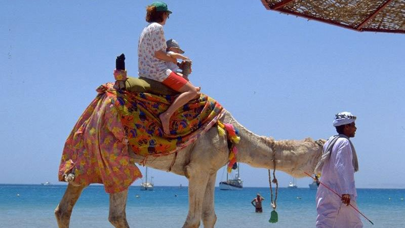 Camel ride on the beach at Hurghada, Egypt