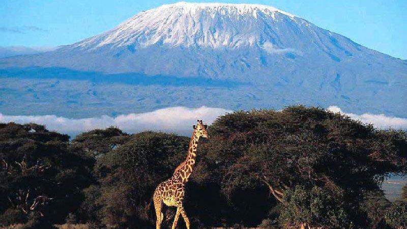 kilimanjaro-tanzania.jpg