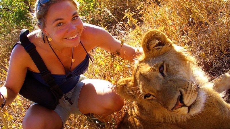 lion-victoria-falls-zimbabwe.jpg