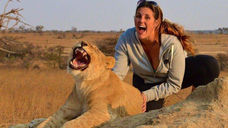 lion-zimbabwe.jpg