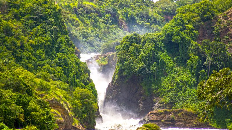 Great Lakes Tours And Travel Uganda