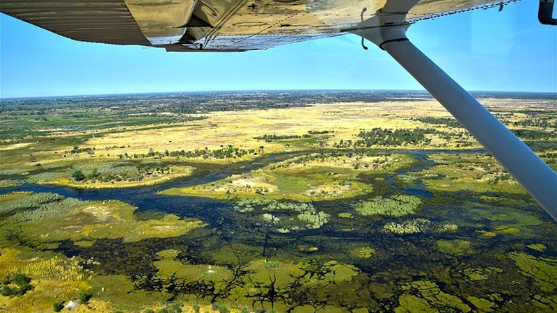 Okavango Delta from the air, Botswana
