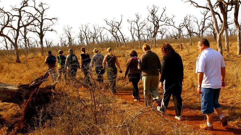 okavango-delta-walk-botswana.jpg
