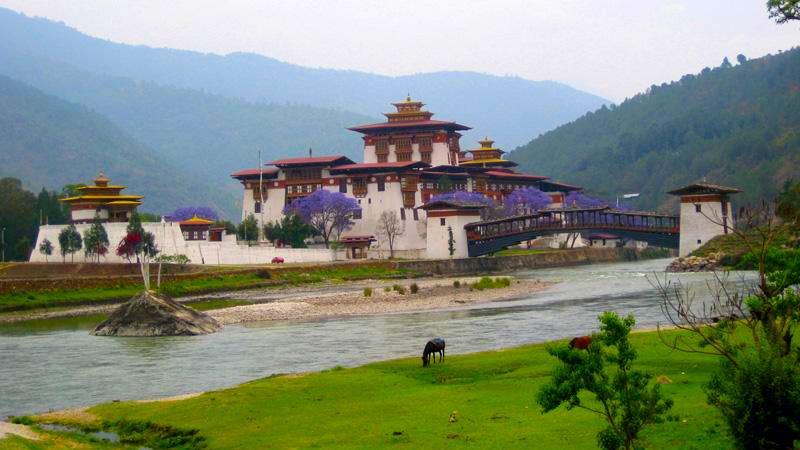 punakha-dzong-bhutan.jpg