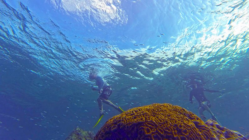 snorkelling-in-the-maldives.jpg