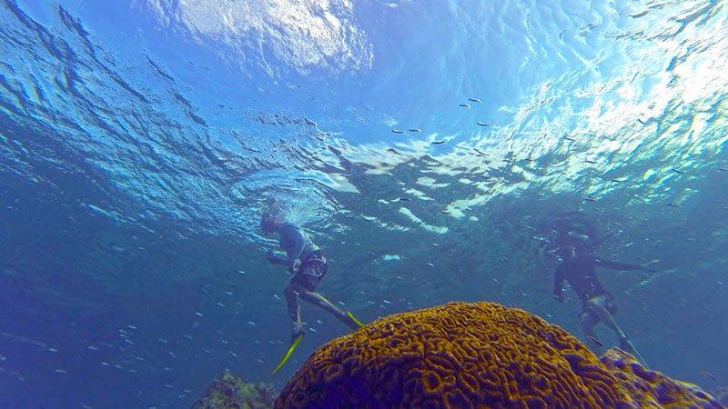 snorkelling-in-the-maldives.jpg