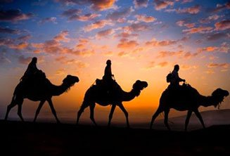 Sunset desert camel ride